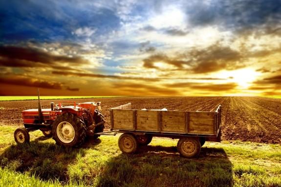 Фермерство выгодный бизнес!