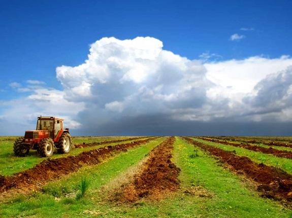 Сельское хозяйство одно из самых перспективных направлений!