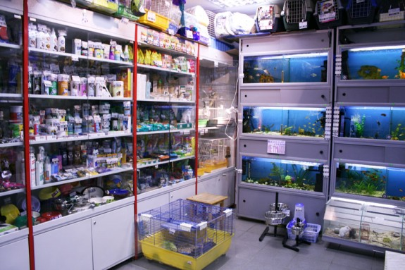 Стеллаж в магазине и аквариумы!