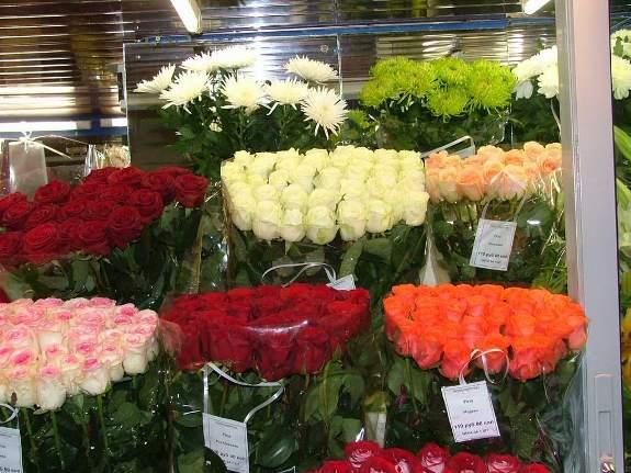 Самые популярные цветы!
