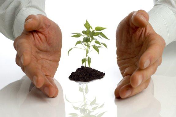 Начните свой малый бизнес с помощью поддержки государства!