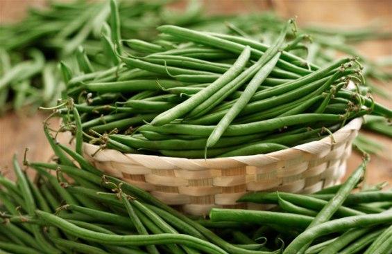 Выращивание фасоли как дополнительный источник дохода