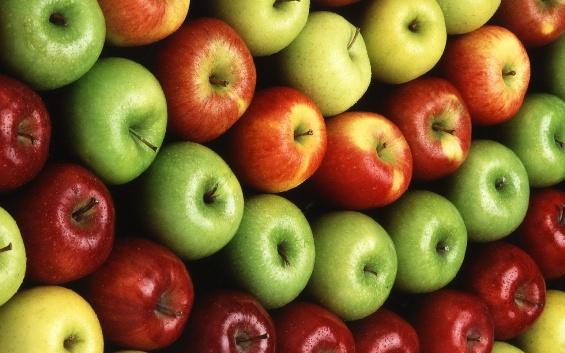 Урожай яблок!